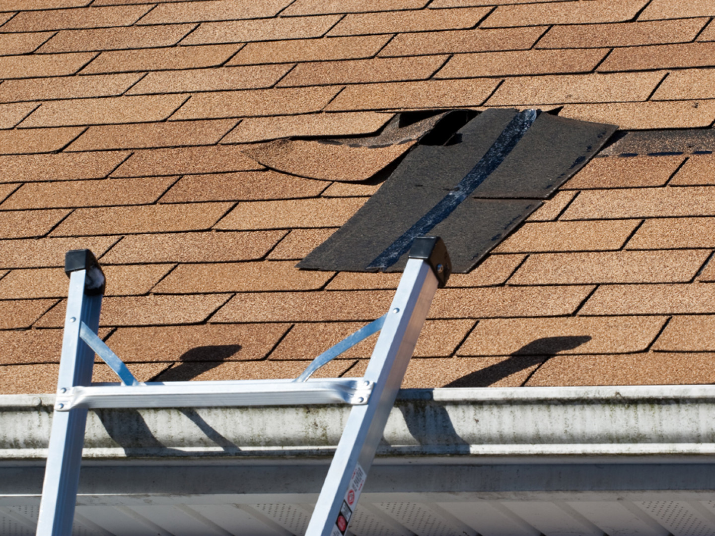 Excellent service and revolutionary roof replacement methods